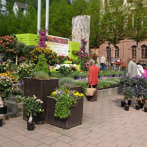 Blumenmarkt Rathausplatz