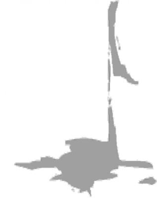 Logo Zwerenberger Kirchenkonzerte e. V.